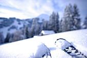 Skiing tour, Hohe Salve, skiing area  Brixen im Thale, Tyrol, Austria