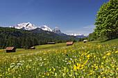 Alpine landscape with wooden cabins, Werdenfelser Land, Wetterstein Mountains, Upper Bavaria, Germany