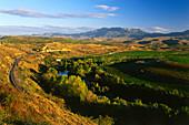 Weinberge, Rio Ebro, Eisenbahn, Tal des Ebro, in der Nähe von Briones, in der Nähe von Haro, La Rioja, Spanien