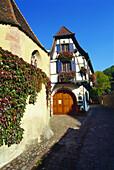 Winery Jean Dietrich in Kaysersberg,Elsass,France