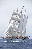 Star Clipper under Full Sail, Antigua Classic Yacht Regatta, Antigua