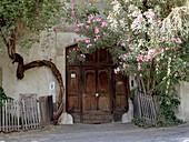 Gate with flowers, Bolzano, South Tyrol, Italy