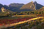 Vineyard in front of mountain with rock formation, Dentelles de Montmirail, Vaucluse, Provence, France, Europe