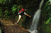 One hiker near waterfall, Heaphy Track, Nature Reserve, South Island, New Zealand