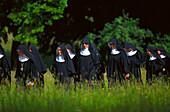 Corpus Christi Procession, Herrenchiemsee, lake Chiemsee, Bavaria, Germany