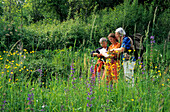 Three hikers in field of flowers reading a map, Piave valley, Venezia, Italy