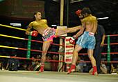 Thai Boxing, Lumphini Stadium, Bangkok, Thailand