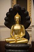 Meditating Buddha, protected by Mucalinda, Wat Suthat, Bangkok, Thailand