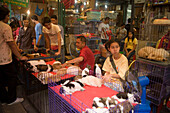 Dealer offering puppies at Suan Chatuchak Weekend Market, Bangkok, Thailand