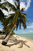 Vacationers sunbathing at Mae Nam Beach, Hat Mae Nam, Ko Samui, Thailand