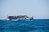 Tourists having a boat trip, Ko Phi Phi Don, Ko Phi Phi Islands, Krabi, Thailand