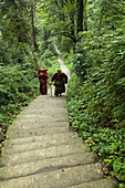 path and stairs, pilgrims from Tibet, Mountains, Emei Shan, World Heritage Site, UNESCO, China, Asia