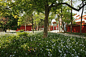 Temple Garden, red monastery wall, Taoist Heng Shan south, Hunan province, Hengshan, Mount Heng, China, Asia