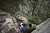 Tourists climbing downwards, stone steps and chains below North Peak,Taoist mountain, Hua Shan, Shaanxi province, Taoist mountain, China, Asia