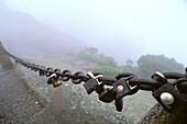 Vorhängeschloss, Kette, Huang Shan,Vorhängeschlösser an Eisenkette, Ehepaare schließen sich hier symbolisch zusammen und werfen den Schlüssel in den Abgrund, Bund fürs Leben, Huang Shan, Anhui province, UNESCO, Weltkulturerbe, China, Asien