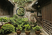 traditional courtyard with pot plants, Huizhou architecture, Hongcun, ancient village, living museum, Ming, China, Asia, World Heritage Site, UNESCO