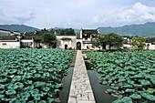 entrance to Hongcun is across one bridge, lotus pond, ancient village, living museum, China, Asia, World Heritage Site, UNESCO