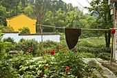 Idyllic garden of the nunnery at the village Minyuan, Jiuhua Shan, Anhui province, China, Asia