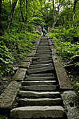pilgrim path along steep steps to the peak, 1613 metres high, Wudang Shan, Taoist mountain, Hubei province, Wudangshan, Mount Wudang, UNESCO world cultural heritage site, birthplace of Tai chi, China, Asia