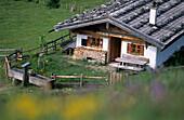 Traditional alpine hut with shingle roof, Oberauerbrunstalm, taken through a field of flowers, Chiemgau Alps, Upper Bavaria, Bavaria, Germany