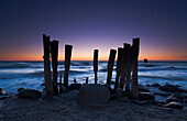 Wooden stakes on the beach in the shape of organ pipes, Rugen Island, Mecklenburg Western Pommerania, Germany