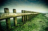 Tideland at west head, island Wangerooge, East Friesland, Lower Saxony, Germany