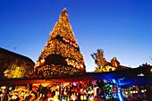 Christmas market, world biggest Christmas tree, in the evening, Dortmund, North-Rhine Westphalia, Germany