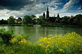 View over the Danube to Ulmer Munster (minster), Ulm, Baden-Wurttemberg, Germany