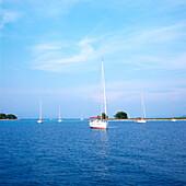 Sailboats anchoring in a bay, Dalmatia, Croatia