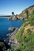 Pigeon Bay, Near Cloudy Bay, near Blenheim, Marlborough, South Island, New Zealand