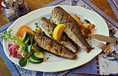 Fish speciality on a plate, Herring and roast potatoes, Rugen Island, Mecklenburg-Pomerania, Germany, Europe