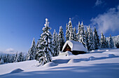 Deeply snow covered alpine hut with winter forest, Gosau, Dachstein range, Upper Austria, Austria