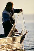 A man fishing in lake Chiemsee, Bavaria, Germany, Europe