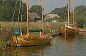 Born, harbour, Fischland-Darß-Zingst, Mecklenburg-Pomerania, Germany, Europe