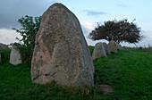 Megalithic tomb of Riesenberg, Ruegen Island, Mecklenburg-Pomerania, Germany, Europe