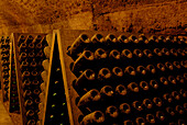 Dusty wine bottles at wine cellars, Remich an der Mosel, Luxemburg, Europe