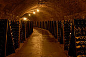 Wine bottles at wine cellars, Remich an der Mosel, Luxemburg, Europe
