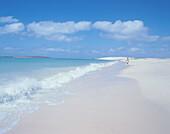 Praia da Chave, uninhabited beach south of Sal Rei, Boa Vista Island, Cape Verde Islands, Capo Verde, Africa