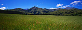 Panorama of grassy plains and wide landscape, South Island, New Zealand