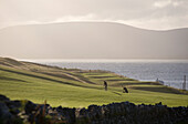 Golf course near Waterville, Ring of Kerry, Ireland, Europe