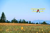 Rod Magner's Travel Air, San Juan Islands, Washington, USA