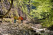 Three men canyon hiking through gorge Ofenloch, Canton St. Gallen, Switzerland