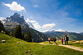 Hikers on alp Pfingstegg (1391 m), Schreckhorn (4078 m) and Eiger (3970 m) in background, Grindelwald, Bernese Oberland (highlands), Canton of Bern, Switzerland