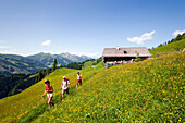 Hikers leaving Bichlalm (1731 m), Grossarl Valley, Salzburg, Austria