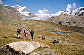 Group of hikers on the way to the Alpine hut Fluhalp, snowy Alps in background, Zermatt, Valais, Switzerland