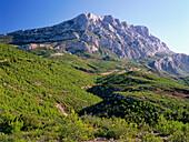 Montaine Sainte-Victore, near Aix-en-Provence, Provence, France