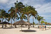 Strandschirme und Palmen am Bucuti Beach Resort, Eagle Beach, Aruba, ABC-Inseln, Niederländische Antillen, Karibik