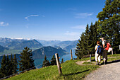 Mature adult couple looking over Lake Lucerne to mount Burgenstock and mount Pilatus (2132 m), from mount Rigi (1797 m, Queen of the Mountains), Rigi-Kaltbad, Canton of Schwyz, Switzerland