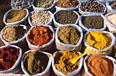 India Goa Mapsa market curry spices