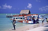 Boat, tourists, Tobago, Pigeon Point